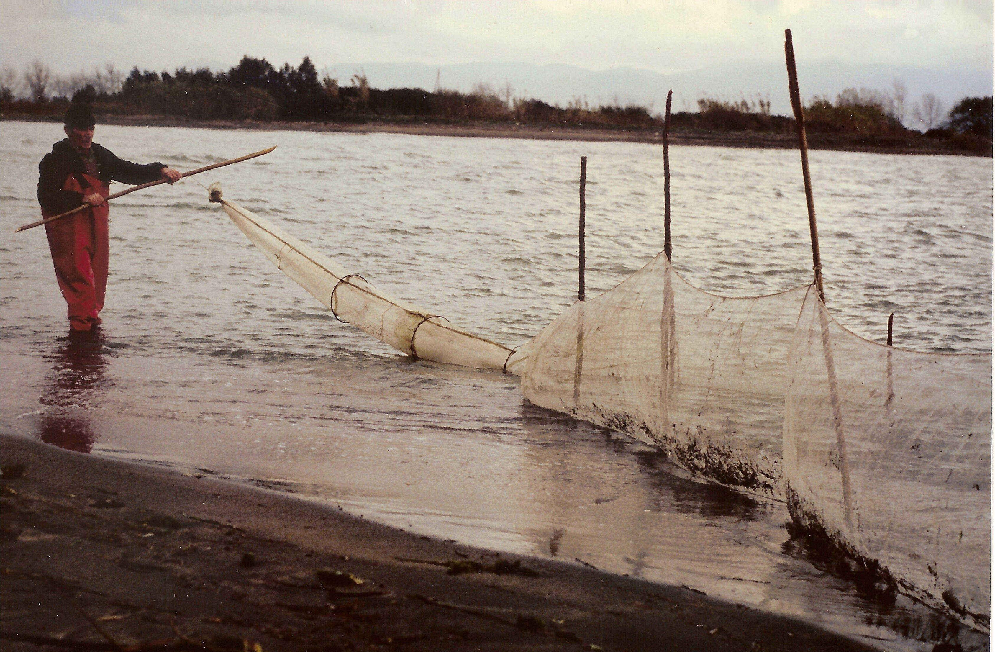 Argo fornaciari un benemerito dell 39 acquacoltura italiana for Vasche per allevamento trote